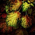 Autumn Motif by Lobostudio Hamburg