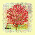 Autumn Musings 2 by John M Bailey