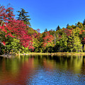 Autumn On 7th Lake by David Patterson