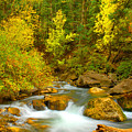Autumn On Big Cottonwood River by Dennis Hammer
