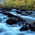 Autumn On Bishop Creek by Stuart Gordon