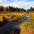 Autumn On Jackfish Creek by Larry Ricker