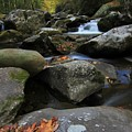 Autumn On Little River In The Smoky Mountains by Dan Sproul