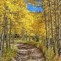 Autumn On Medano Pass by Tony Baca