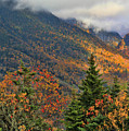 Autumn On Mount Mansfield Vermont by Dan Sproul