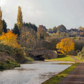 Autumn On The Canal by Chris Horsnell