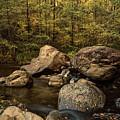 Autumn On The Creek  by Saija Lehtonen