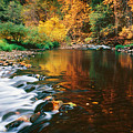 Autumn On The Merced River Yosemite Np by Edward Mendes