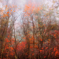 Autumn On The Mountain by Keith Vanstone