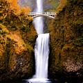 Autumn Orange Multnomah Falls by Athena Mckinzie