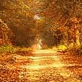 Autumn Paradisium by Georgiana Romanovna