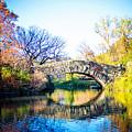 Autumn Park by Anna Serebryanik