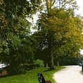Autumn Park  by Francesca Mackenney