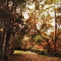 Autumn Passage II by Jessica Jenney