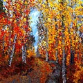 Autumn Path by Barrie Stark