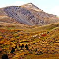 Autumn Peaks In The Rockies by Amy McDaniel