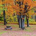 Autumn Picnic by Jack Sassard