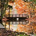 Autumn Pleasure by Christina Rollo