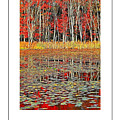 Autumn Pond And Lily Pads Poster by Mike Nellums