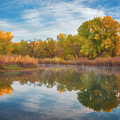Autumn Pond by Darren White