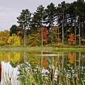 Autumn Pond by Phill Doherty