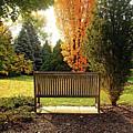 Autumn Quiet by Debbie Oppermann