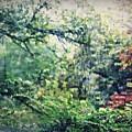 Autumn Rain by Sarah Loft