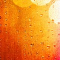 Autumn Raindrops by Dan Sproul