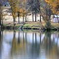 Autumn Reflection 16 by Carol Groenen