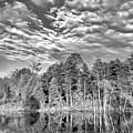 Autumn Reflection 2 Bw by Steve Harrington