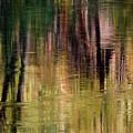 Autumn Reflection by Floyd Hopper