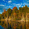 Autumn Reflection II by Steve Harrington