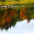 Autumn Reflection by Tony Beaver