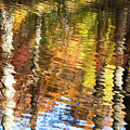 Autumn Reflections-3 by Diane Macdonald