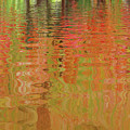 Autumn Reflections Abstract by Gill Billington