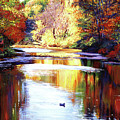 Autumn Reflections by David Lloyd Glover