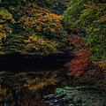 Autumn Reflections In Irish River by James Truett