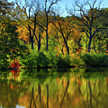 Autumn Reflections On Salt Creek IIi by Ira Marcus