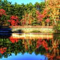 Autumn Reflections by Tina LeCour