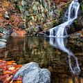 Autumn Refletions by Rachel Snydstrup
