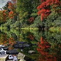 Autumn River Landscape by Carol Montoya