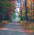 Autumn Road by Jennifer Englehardt