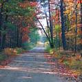Autumn Road by Jennifer Englehardt