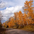 Autumn Road by Larry Ricker