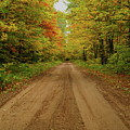Autumn Road by Michael Peychich