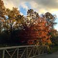 Autumn Rust by Kaeleigh Gray
