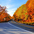 Autumn Scene With Road In Forest 2 by Jeelan Clark