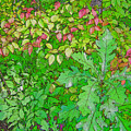 Autumn Splender by Joanne Smoley
