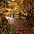 Autumn Splendor Bridge by Jessica Jenney
