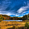 Autumn Splendor On Fly Pond by David Patterson